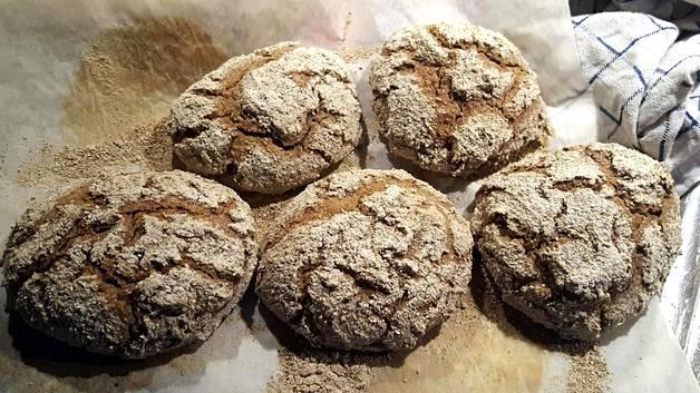 Viisi vastapaistettua ruisleipää leivinpaperin päällä.