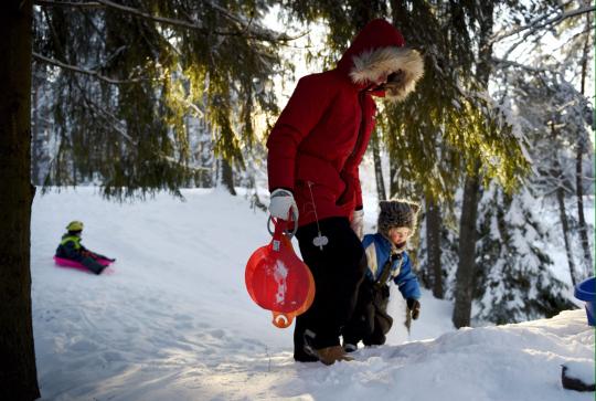 Äiti ja kaksi lasta pulkkailevat pienessä rinteessä puiden keskellä aurinkoisena talvipäivänä.